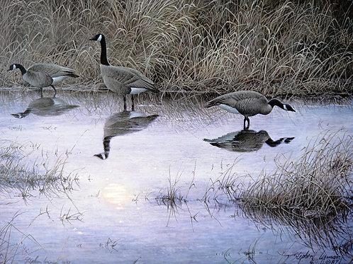 """""""Moon Shadow"""" by Stephen Lyman, LE Print"""