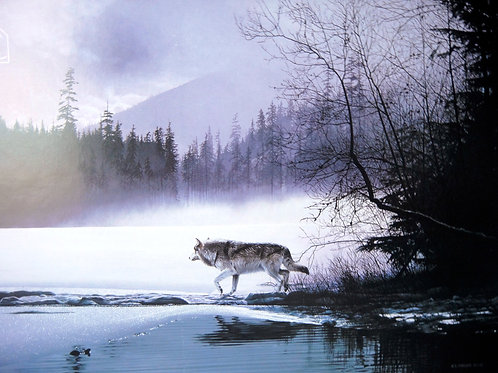 """""""Spring Mist - Gray Wolf Views of Nature"""" a Poster by Ron Parker"""