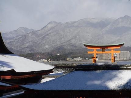 冬の宮島を満喫!2.5時間シーカヤックツアーがちょうど良い!