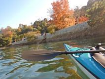 シーカヤックに乗って宮島の紅葉を楽しむ/MIYAJIMASEAKAYAK (宮島シーカヤック)