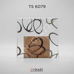 TS-6079.jpg