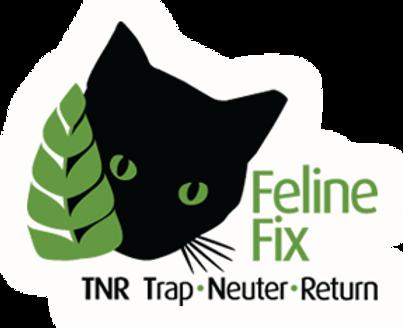 Feline Fix.png