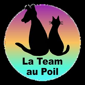 Logo_LTAP_1_détouré.png