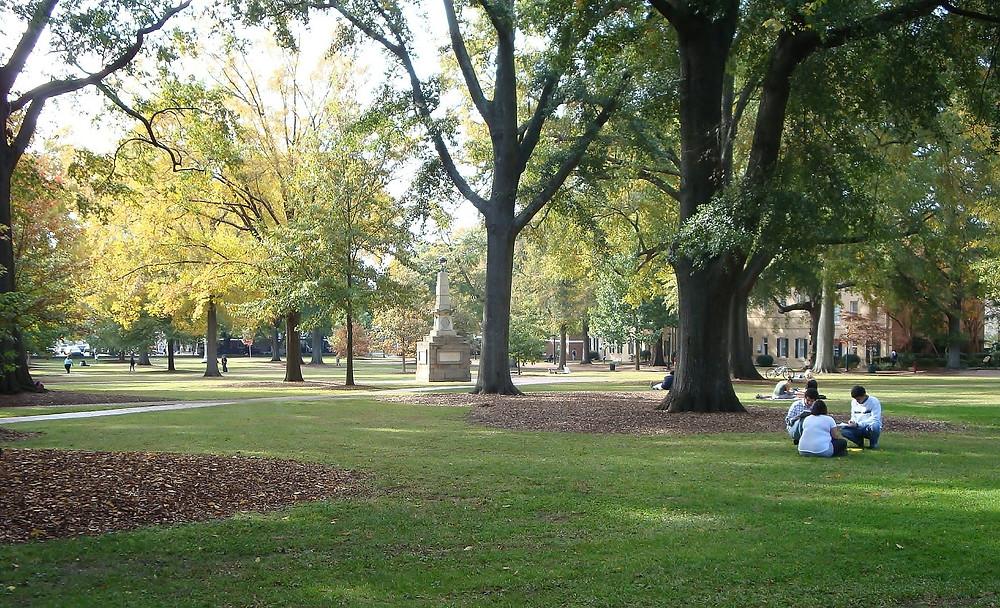 Image of University of South Carolina Horseshoe in Fall