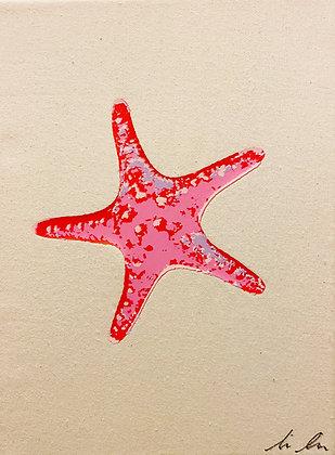 Seastar Canvas