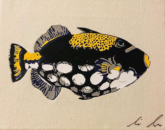Clown Triggerfish Canvas