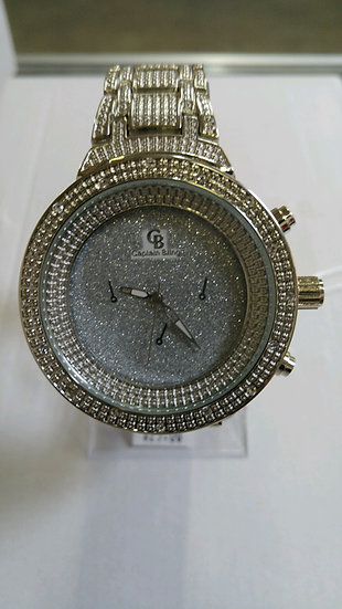 Platinum Watch