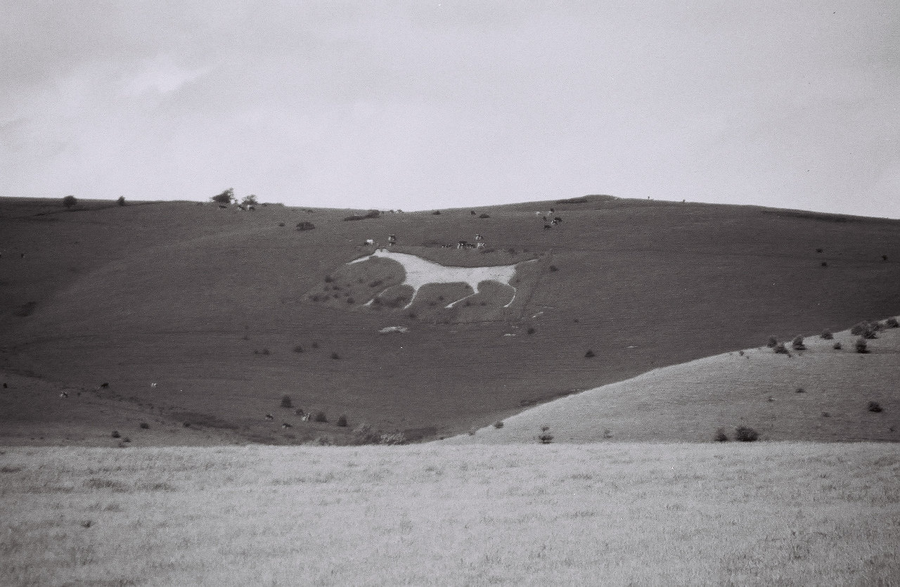 Bratton White Horse, Salisbury Plain