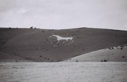 Bratton White Horse, Salisbury Plain