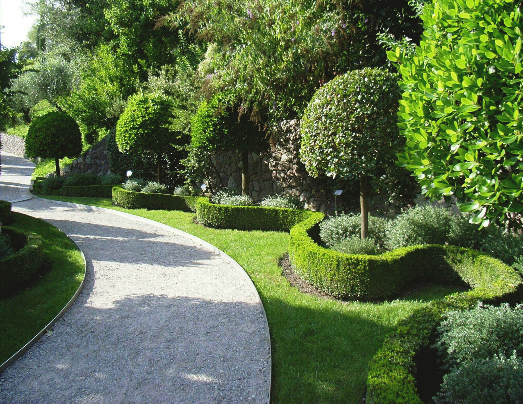 TREE AND HEDGE SERVICES BRISTOL