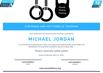 Fundamentals of Gym Rings and Kettlebells Training