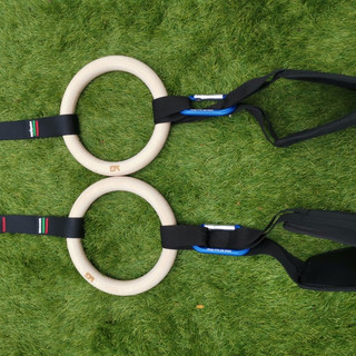MG sling attached to ring.jpg
