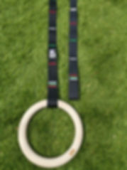 MG Gym rings design.jpg