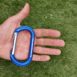 MG Gym Rings carabiner size.jpg
