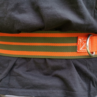 Fireman belt side ring.jpg