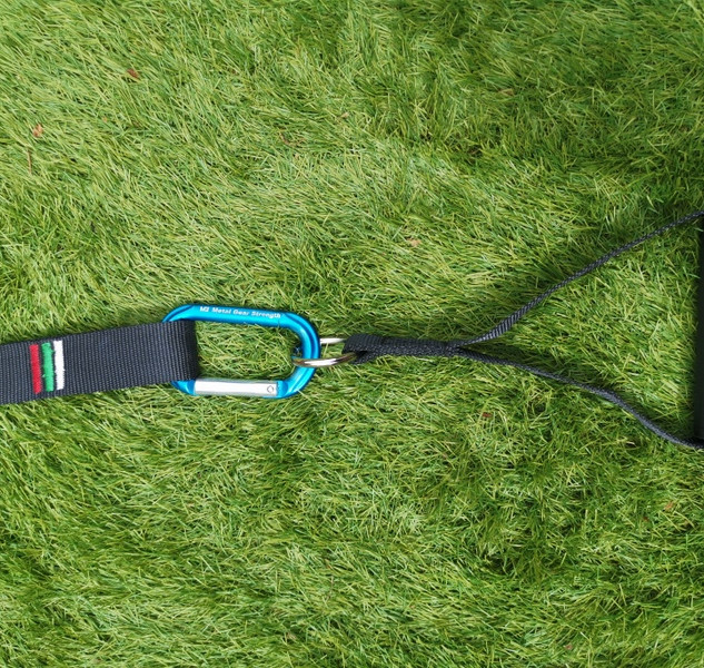 Gym handles attached to strap.jpg