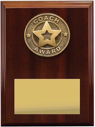 LPF501 Coach Award - 175mm_