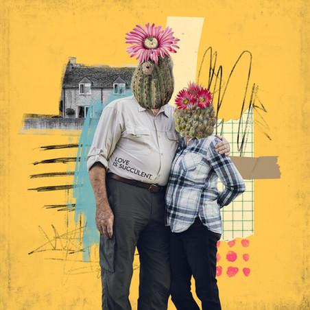 Love is succulent