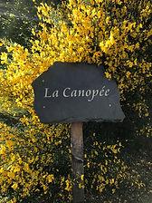 La Canopée gravée sur une ardoise de Travassac