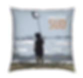 coussin2.png