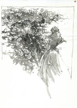 La belle et la bête (roses)