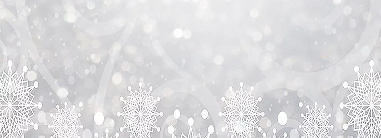 image with snowflake.JPG