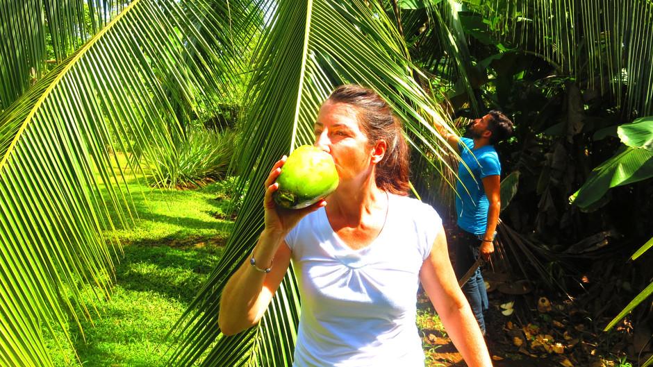 Finca Kobo - decadent Costa Rica rainforest chocolate
