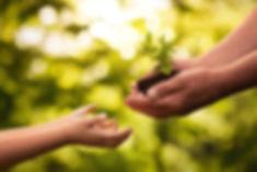 Generosity-or-Self-Sacrifice.jpg