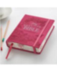 Pink Bible.png