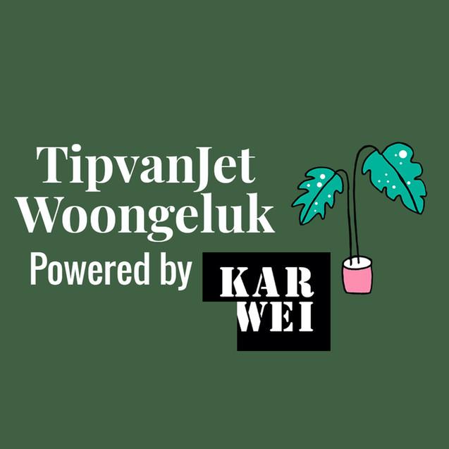 TipvanJet Woongeluk met Karwei
