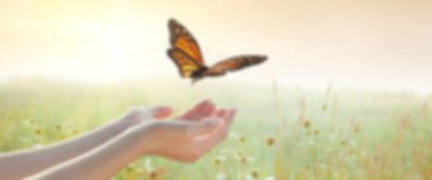 Butterfliesonhand