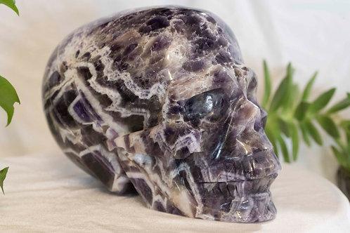 """Amethyst """"banded"""" Skull"""