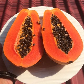 Mama papaya!