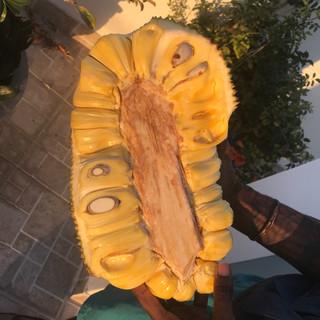 Jackfruit in Vietnam!
