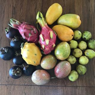 Quick fruit haul!