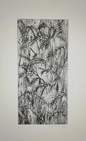 gravure sur zinc - 12/24 cm