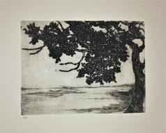 gravure sur zinc monotypée - 20/15 cm