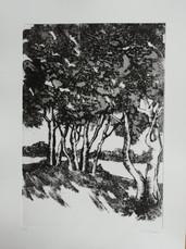 gravure pointe sèche et carborendum - 22/32 cm