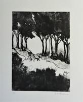 gravure sur plexi et carborendum. 16/22cm