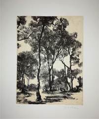 gravure pointe sèche et carborendum et contrecollé -18/24 cm