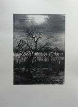 Gravure sur plexi monotypée - 15/20 cm