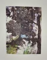 gravure pointe sèche et carborendum et contrecollé - 18/24 cm