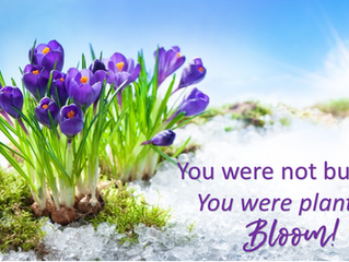 You weren't buried, you were planted - so bloom!