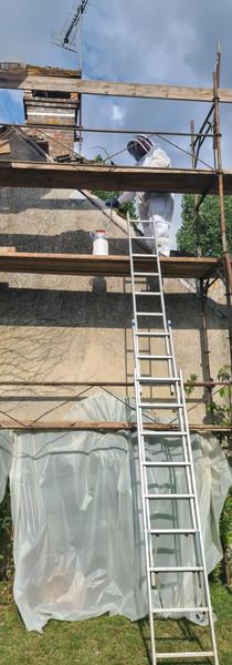 Traitement guêpes sous toiture