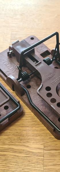 Kit 3 tapettes rat gorilla trap