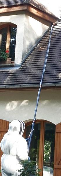 Traitement nid de frelons européens sous toiture