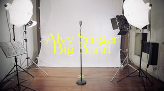alvy singer - Mi amor es asi