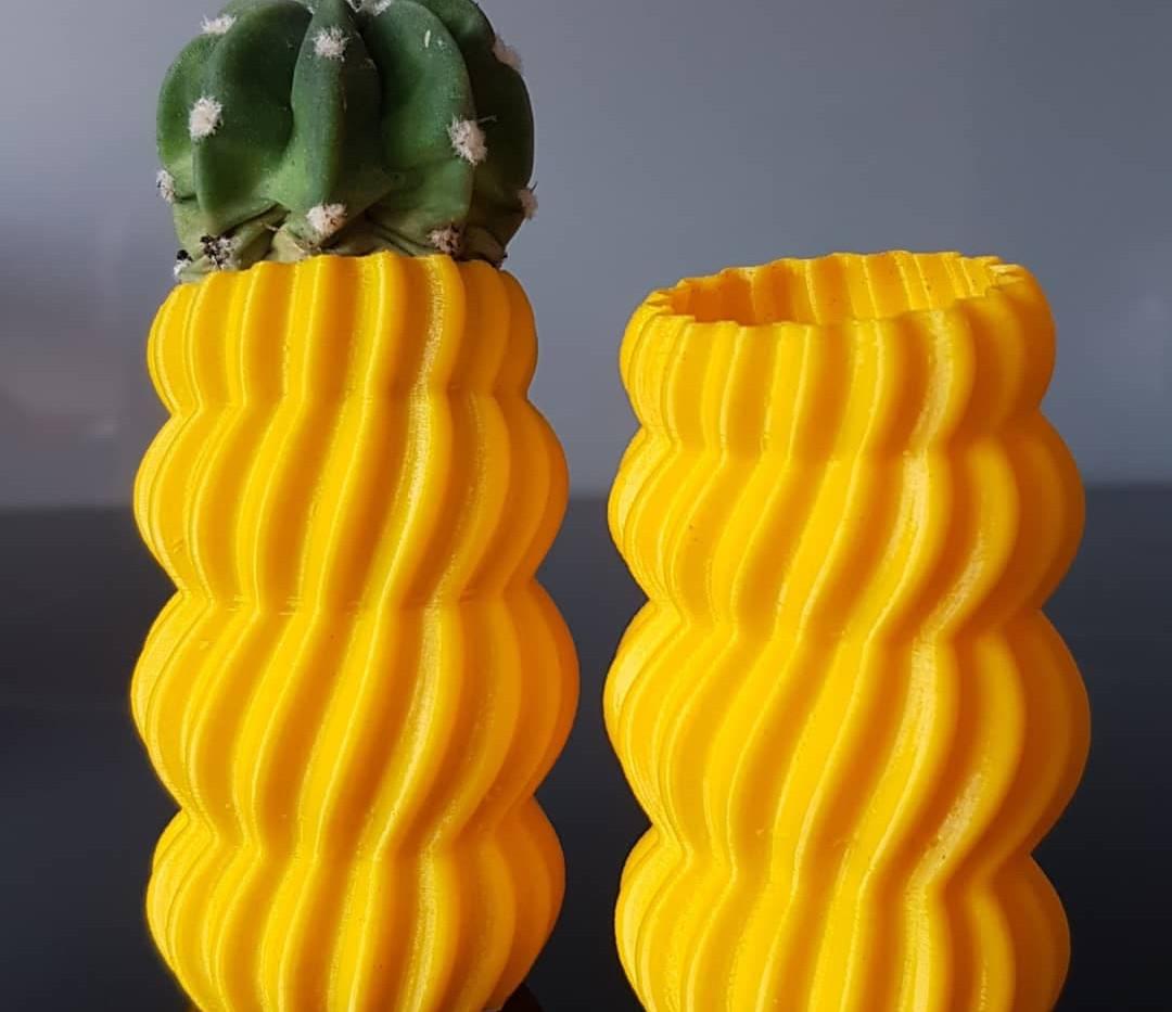 Vase for cactus