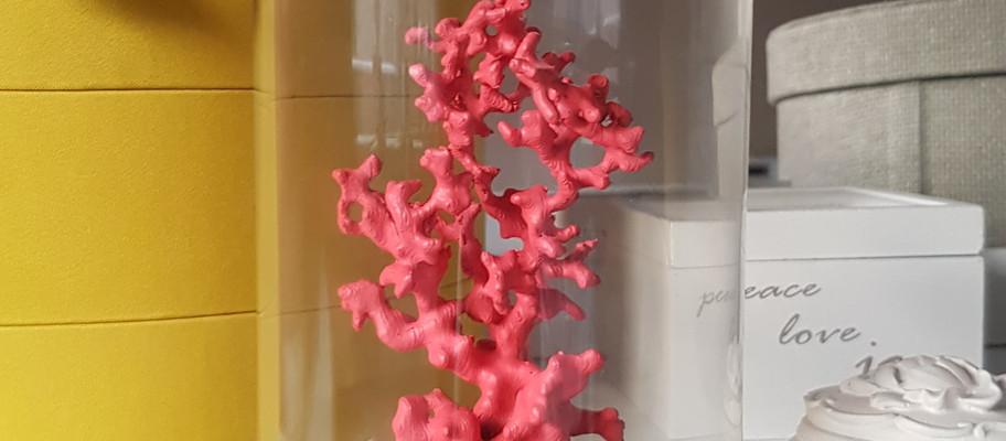 Coral Print (Pink)