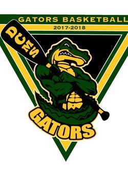 DCMS Basketball Logo
